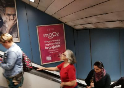 mooz-advertisement-7