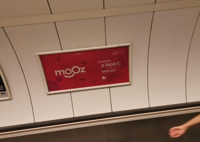 mooz-advertisement-5